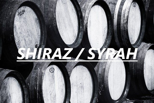 Shiraz/Syrah